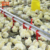 Automatic poultry equipment/broiler pan feeding system/ complete farming system
