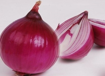 The purple green onion of new light violet onion was online wholesale in 2016