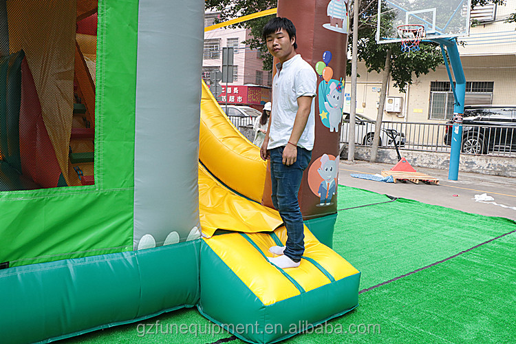 inflatable bouncer .jpg