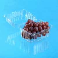 1000G Food Grade Clear Blister PET Clamshell Packing Disposable Fruit Packaging Plastic Container FDA Approval
