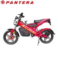 Chinese Popular Folding Electric Bicycle Like Motorcycle