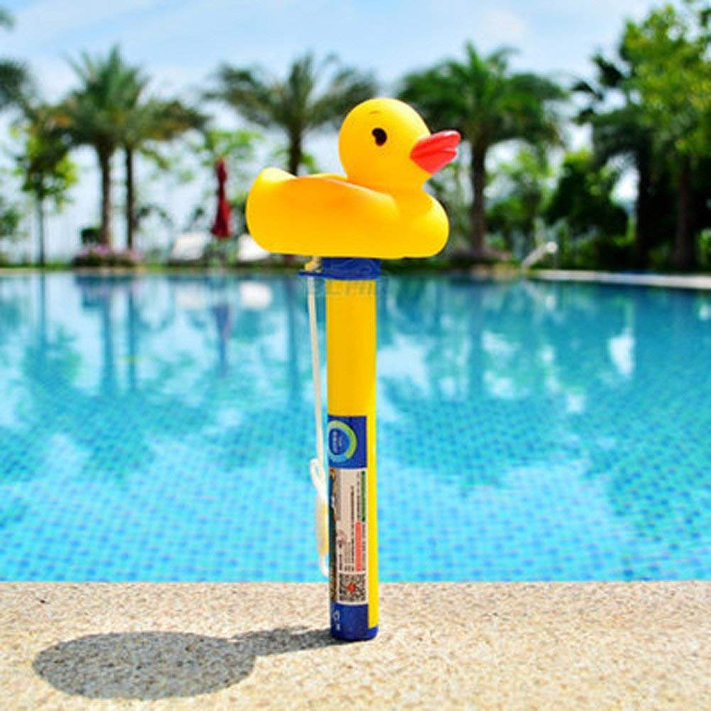 Fish Ponds Highlifes Large Floating Pool Thermometer Pro Float Water Thermometers Hot Tubs For Outdoor Indoor Swimming Pools Spas Tutiflores Com Br
