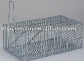 pet supply luxury metal canary hamster breeding oxygen cage
