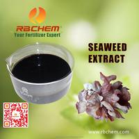 RBCHEM 100% natural plant growth promoter seaweed extract fertilizer ascophyllum nodosum liquid