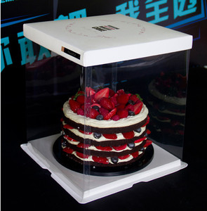 Custom Logo Printed Disposable strong PET new design tall clear plastic cake box