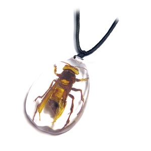 Wholesale Tiger Wasp Acrylic Resin Insect Body Jewelry