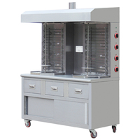 Stainless Steel Double Head Electric Shawarma Machine BN-RE08-8