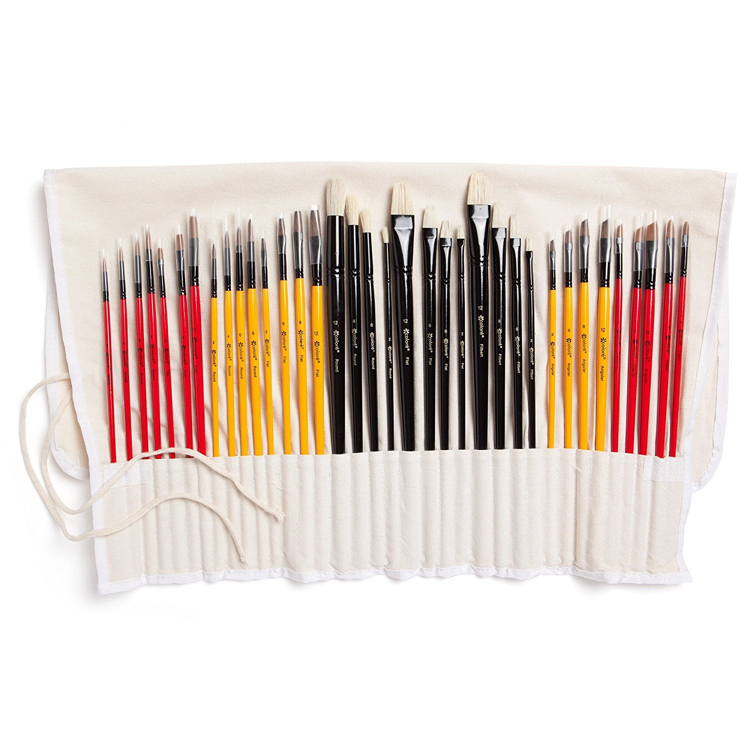Colore Art Paint Brushes With Nylon Wrapping Case – Complete PACK of 36 Professional Grade Paint Brush Set – 12 Acrylic, 12 Oil & 12 Watercolor Paintbrushes – Lightweight and Durable Painting Supplies