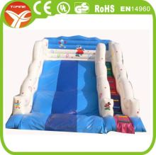 Small Indoor Playground Cheap Inflatable Water Slides For Sale