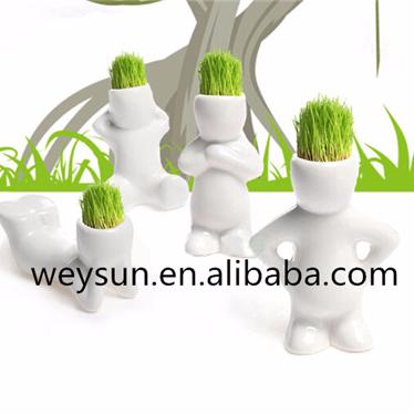 Alibaba.com / Christmas DIY White Man Magic grass planting,Creative Gift Hair man Office Mini Plant Fantastic Home Decor