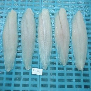 Low Price 10% Glazing Frozen Basa Fish Fillet