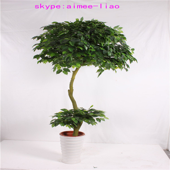 Q082922 different types of plants and trees artificial for Different types of plants and trees