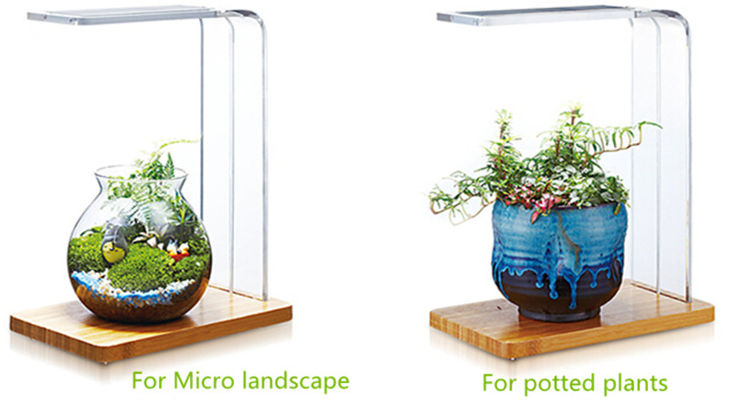 Aquatic Landscaping Led Aquarium Light For Wabi Kusa Moss Tank ...