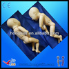 2014 Advanced Medical Silicone Neonatal model,life size newborn baby doll