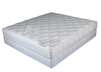 Dreamland Mattress Foam Sponge Mattress