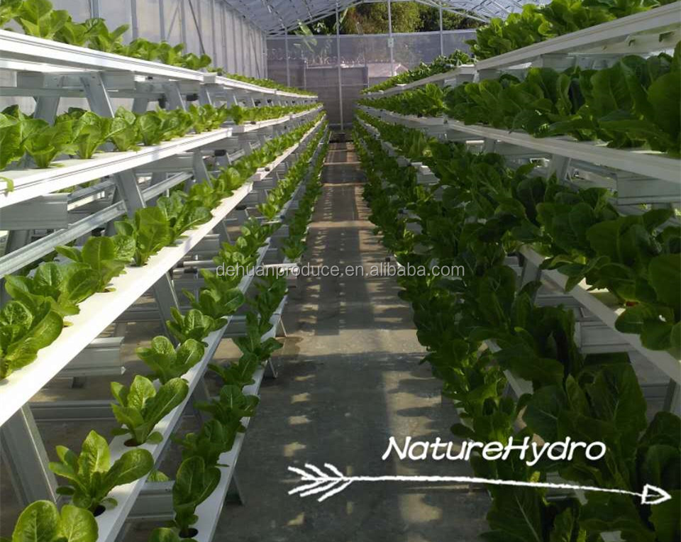 Kapali Bitki Fabrikasi Hidroponik Sistem Dikey Tarim Buy Dikey Tarim Kapali Bitki Yetistirme Sistemleri Dikey Topraksiz Sistem Product On