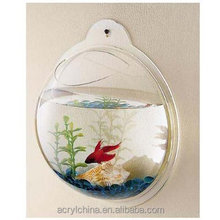 Beautiful new design Wall Hanging <span class=keywords><strong>acrílico</strong></span> Fish Bowl