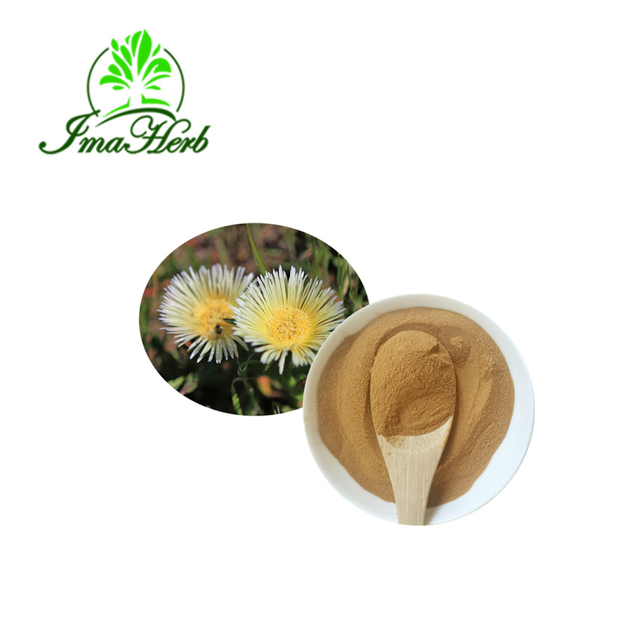 Natural High Quality Kanna/fig Marigold/mesembrianthemum Extract Powder -  Buy Kanna/fig Marigold,Mesembrianthemum Extract Powder,Kanna Extract  Product