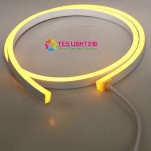 Wet Rated IP68 single color cold neon