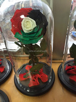 Buy Natural rose in glass preserved flowers in China on Alibaba.com