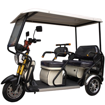 Trendy three wheel electric tricycles tuk tuk electric touring