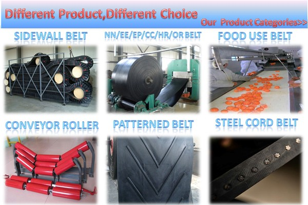 China Suppliers V-shape Conveyor Belt