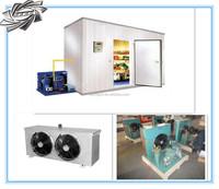 Ningxin walk in cooler and freezer, freezer room ice cream, low temperature walk in freezer.
