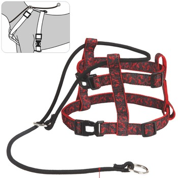 best hot sex woman with red dog pet harness buy best hot sex woman with dog pet harness. Black Bedroom Furniture Sets. Home Design Ideas