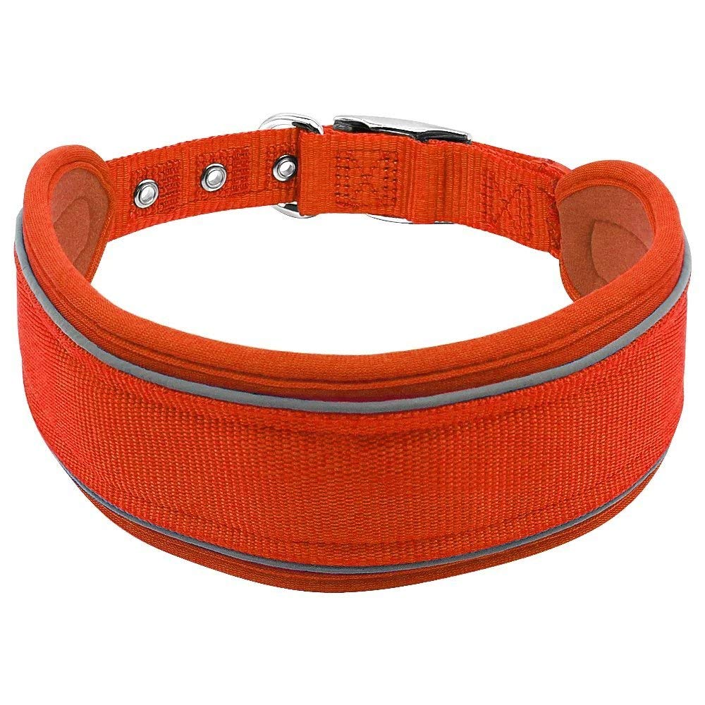 "Didog Nylon Reflective Padded Extra Wide Dog Collar for Large Dogs,2.5""wide,Adjustable 20.5-24.5"""