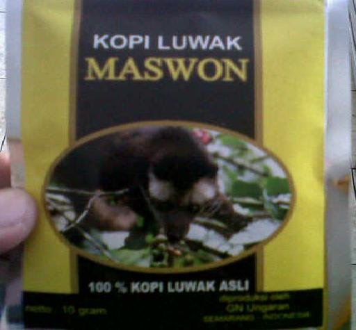 Luwak coffee maswon