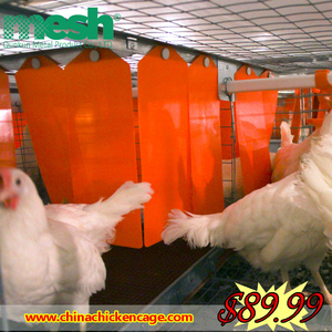 chicken poultry house/cages laying hens