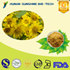 Favorable price of 10:1 Arnica Extract Powder