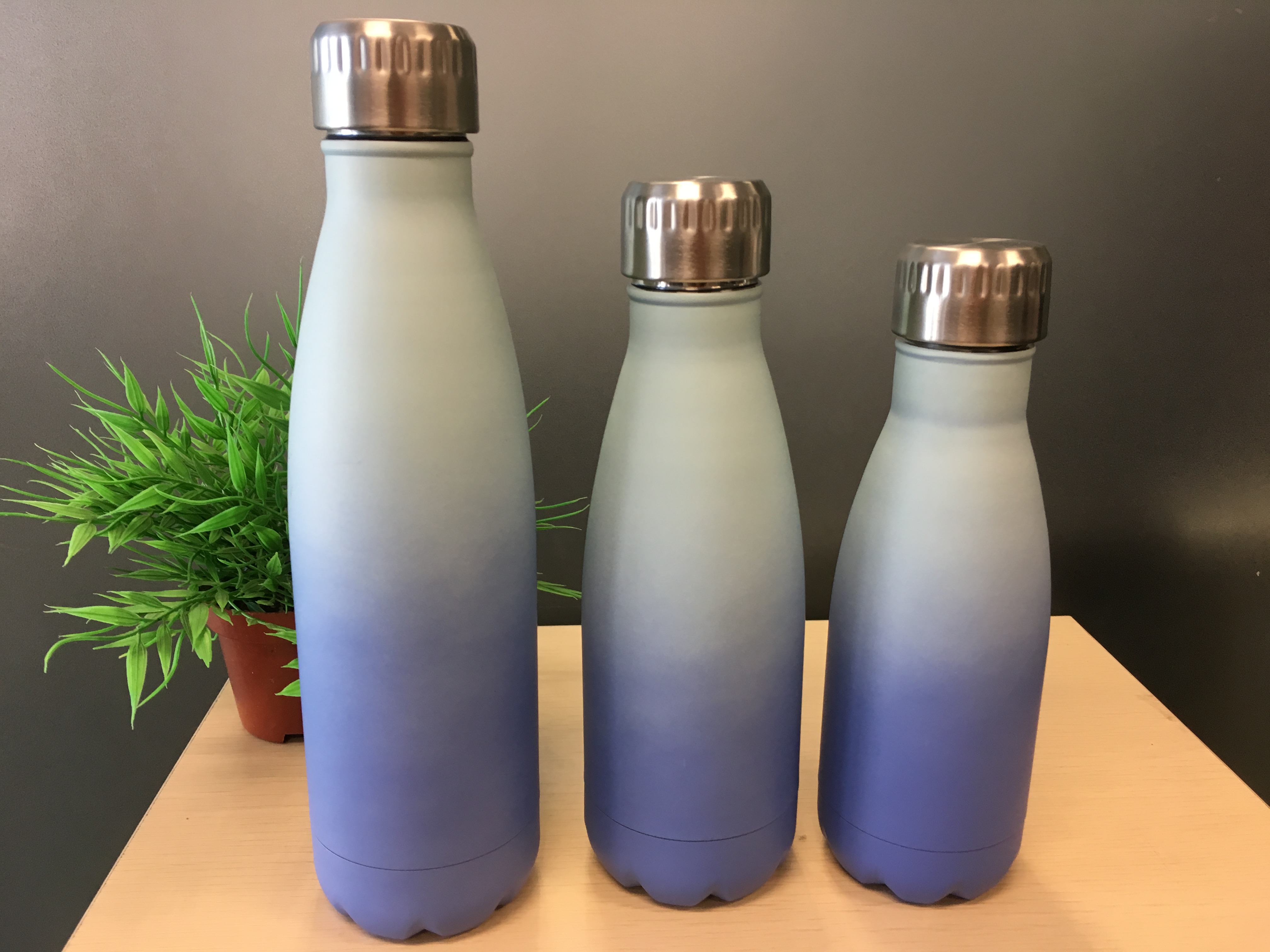 Vacuum Bottle Stainless Steel Insulated Bottle Double Wall bottle