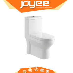Spi Cam In Wc.Joyee Modern Hidden Spy Cam Toilet Wc Composting Toilet