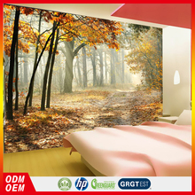 autumn forest leaves falling on the road wallpapers for bedroom