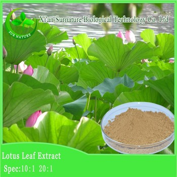 100 natural organic lotus flower dried powdekaloud lotus leaf tea 100 natural organic lotus flower dried powdekaloud lotus leaf tea powder benefits mightylinksfo
