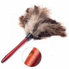 D-TN Handle Ostrich Feather Duster