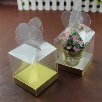 Wholesale small cube PVC PET plastic packaging box apple box for Gift