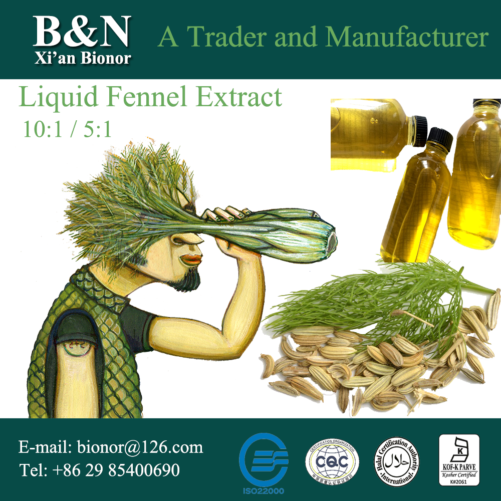 Natural fennel seed extract fennel fluid extract