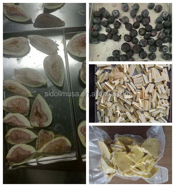 fruit freeze dried