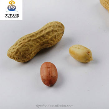Raw peanuts in shell manufacturer