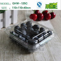 Disposable rectangular clear pet plastic packing box for buleberries fruit
