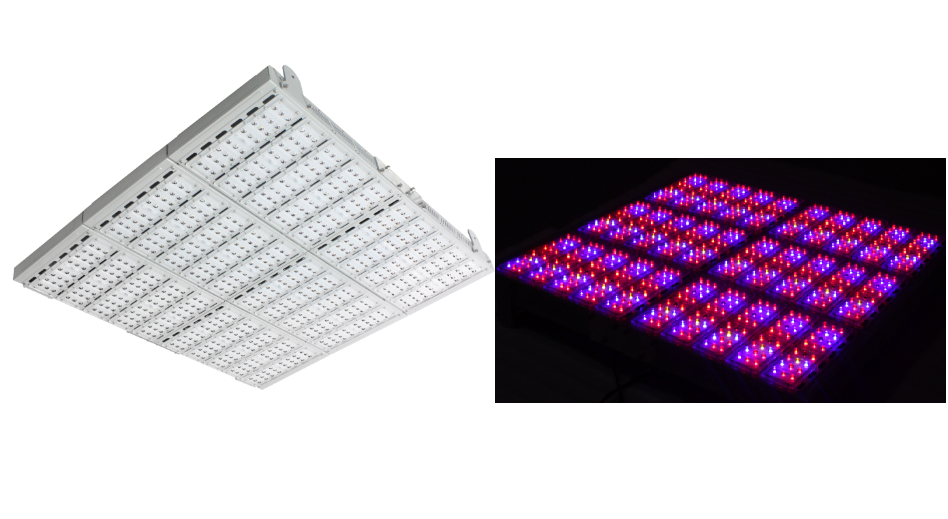 The Largest Led Grow Light 10 10 Ft Large Cover Area 720 3