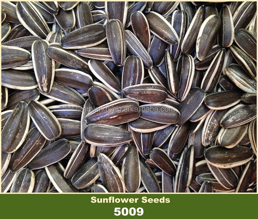 Bulk Chinese Confectionery Sunflower Seeds