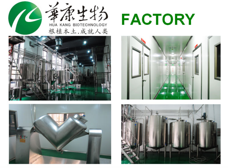 ISO factory supply Natural 25% Anthocyanidin Bilberry Extract