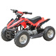 Hot Sale 50cc 2 Stroke Aluminum Easy Pull Start Mini Kids Quad Bike