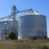 Best Manufacturer Assembly Corn Grain Storage Steel Silo Bin Prices for Sale