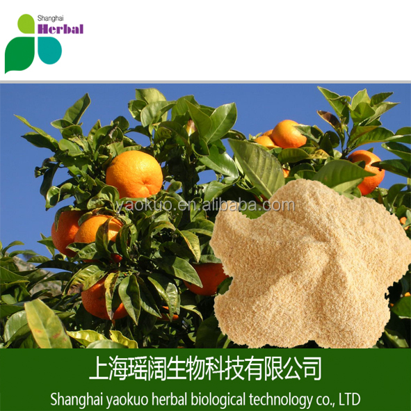High quality orange flavor powder/orange juice powder