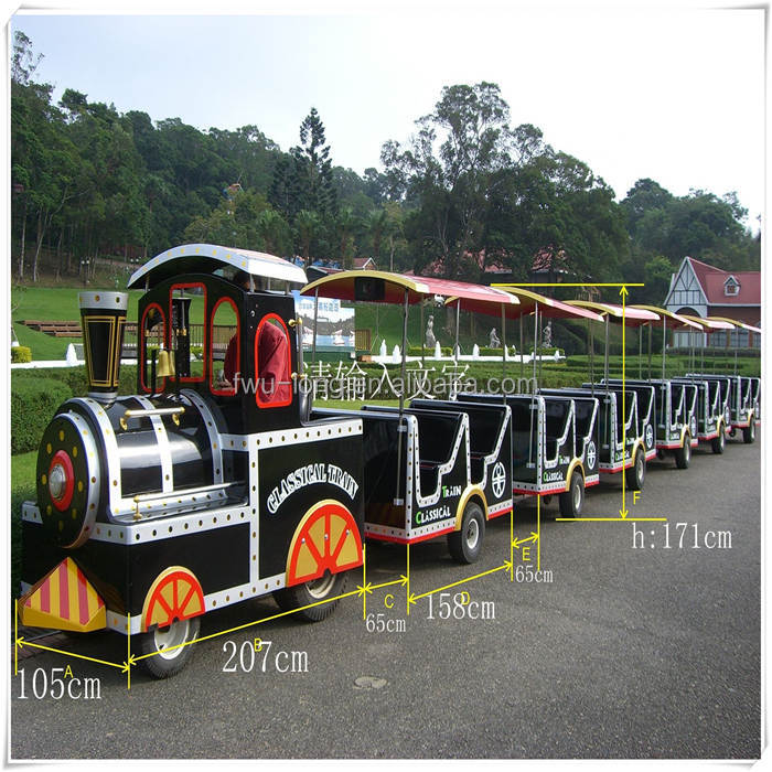 New model amusement park rides outdoor lighted christmas train in fwulong company