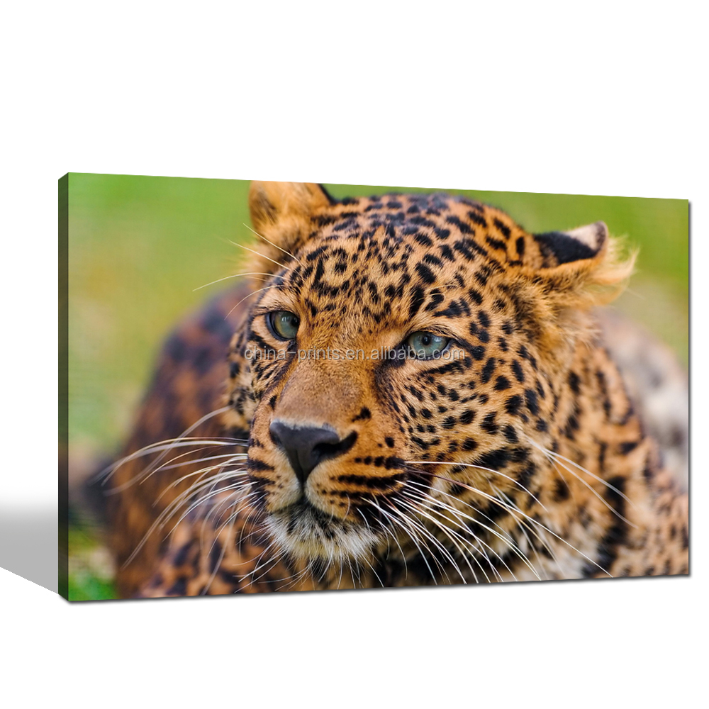 Leopard Canvas Picture Stretched/Wildlife Wall Art Framed for Living Room/Animal Canvas Paintings Home Decoration